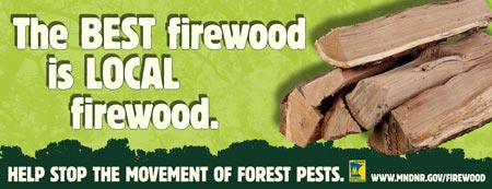 Help the DNR and U.S. Forest Service Stop the Spread of invasive Pests: Buy Firewood where You burn it